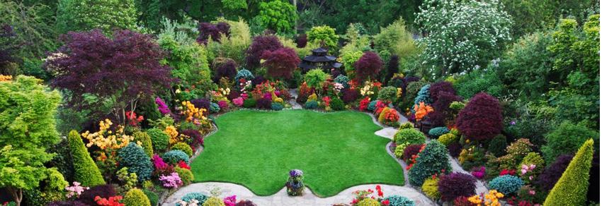 Curte și grădină